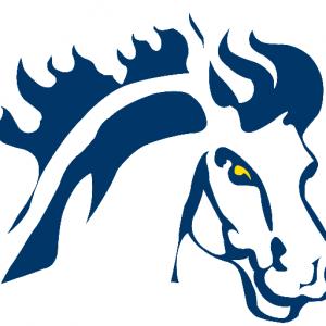 mountmercy-logo